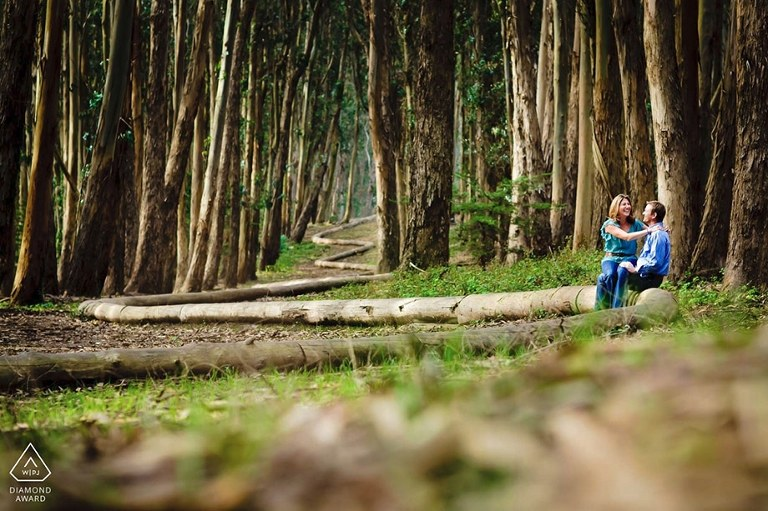San Francisco engagement photo of bride and groom sitting on the logs at Lover's Lane.