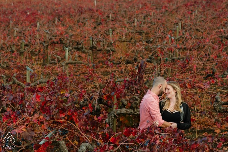 Calistoga vineyards are a colorful location for fall engagement portraits.